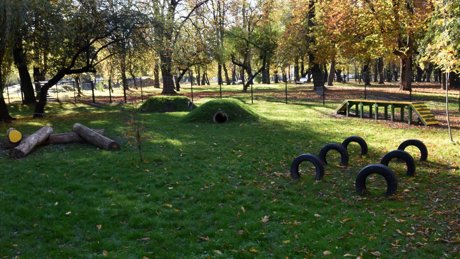 Park miejski z wydzielonym terenem dla psów