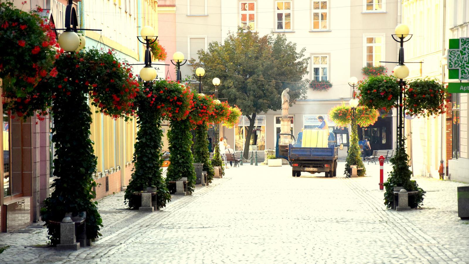 Ulica Świdnicka z pięknie obrośniętymi bluszczem latarniami