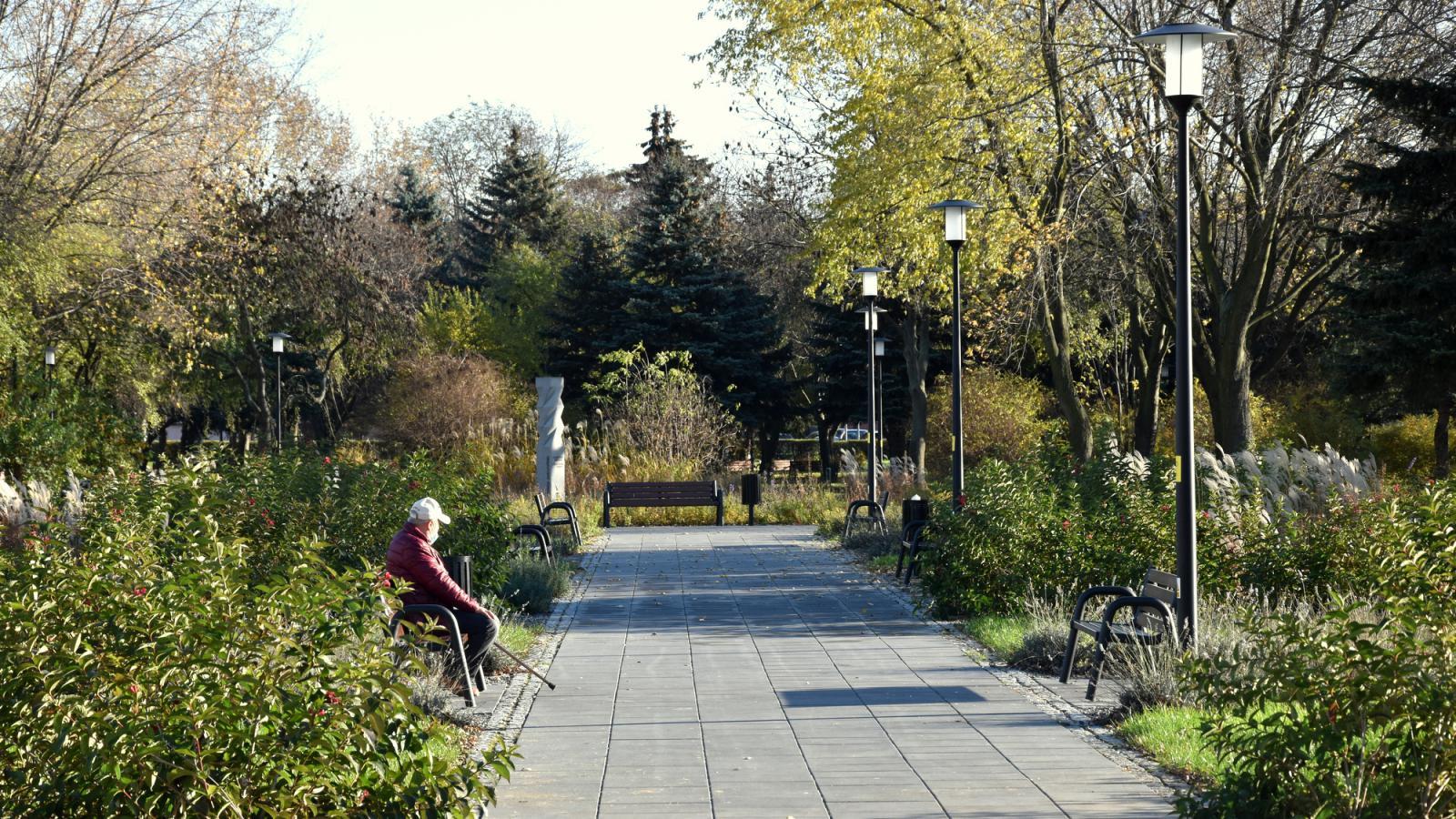 ALejka w parku, na drugim planie mieszkaniec odpoczywający na ławce